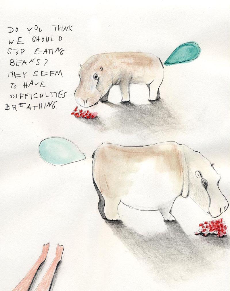 Blog_rhinos