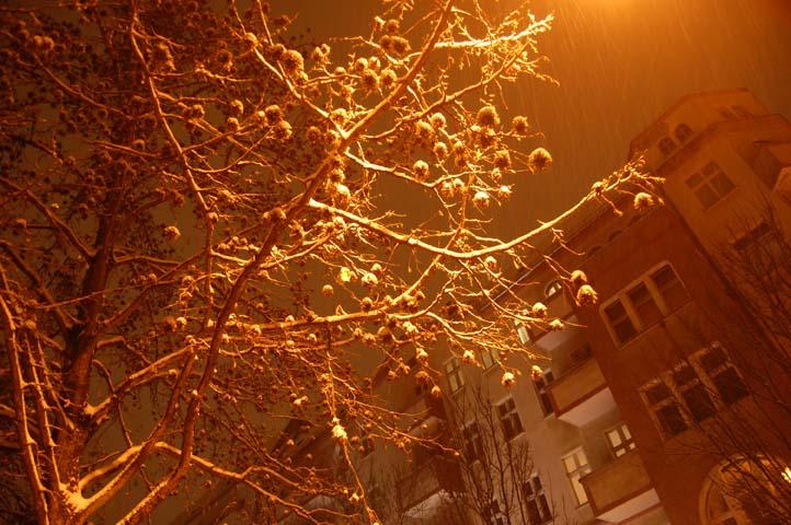 Snowy nighttime_2