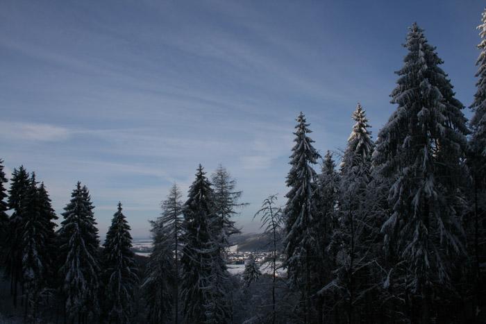 Winterwalk_6