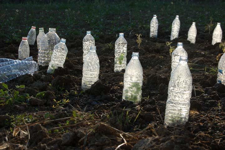 Bottlefield